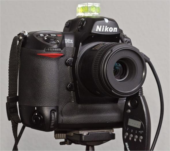 Nikon D2x mit AF-S 40mm Macro