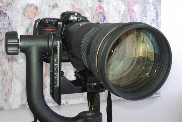 Nikon D2x mit Nikon AF-S 4/200-400mm VR und einer Affenschaukel