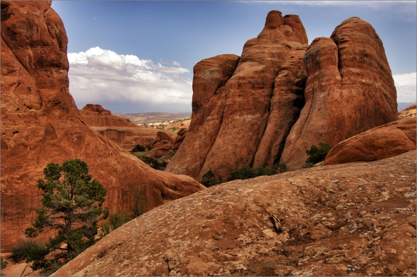 Nikon D2x - Arches National Park
